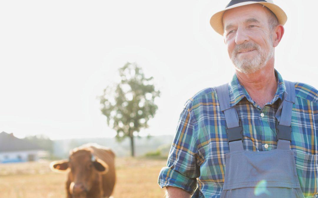 Überlassung der Landwirtschaft zu nicht kostendeckendem Pachtzins